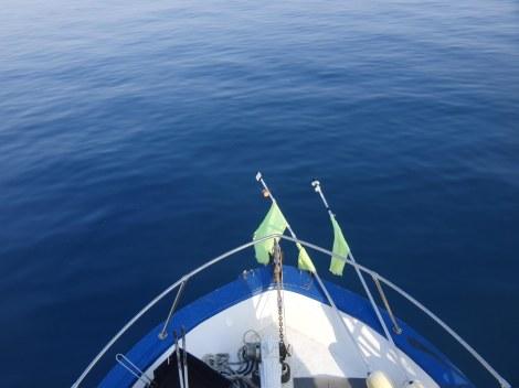 Fare pescaturismo in Toscana, Paolo Fanciulli