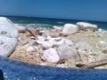 capo bianco isola d'Elba